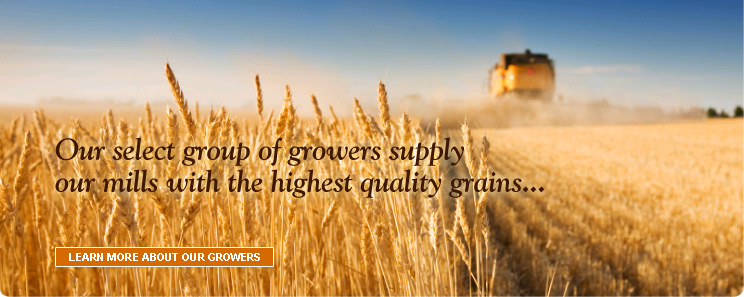 Our select group of growers supply our mills with the highest quality grains...